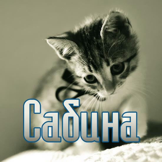 Сабина в чулках 24 фотография