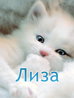 Поздравления с именами кирилл