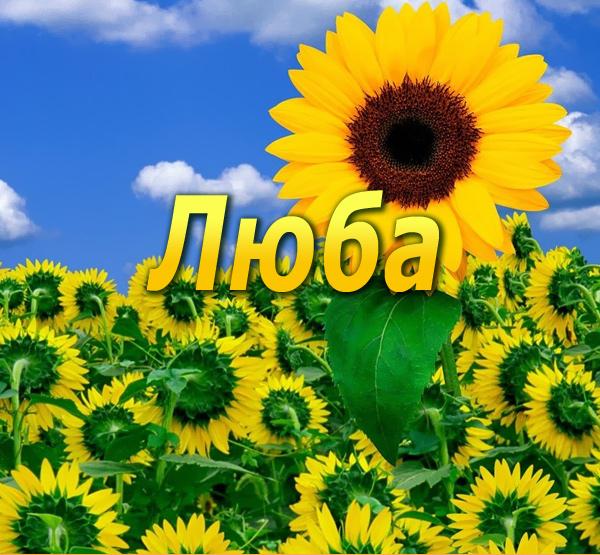 http://www.textopics.ru/imgbig/name_8556.jpg