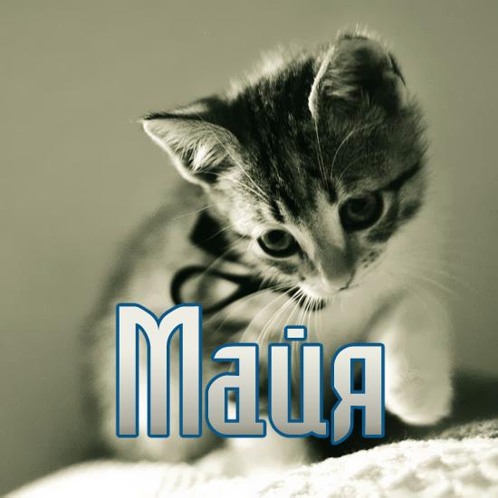 Поздравления с именем майя 71